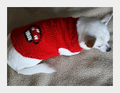 Mario Dog Sweater