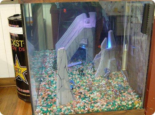 Halo Aquarium
