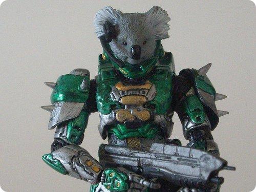 Koala Master Chief