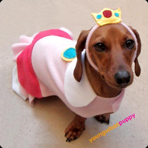Princess Peach Dog Costume