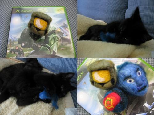 Halo Cat Toys
